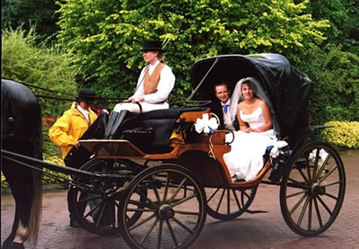 these wedding transportation ideas should be seriously taken into account if you do not want to have unpleasant surprises